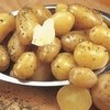 Annabelle Seed Potatoes