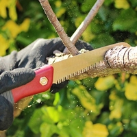 Plants & Plant Care  - Kent And Stowe - Folding Saw