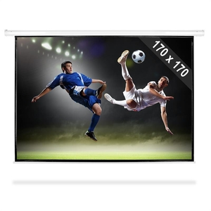 Projection Screens  - Roll-up Home Cinema Projector Screen HDTV 170x170cm