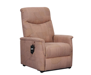 Baltimore Mink Fabric Rise and Recline Chair