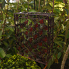 Garden Chairs|Temporarily deactived Butterfly Mega Suet Feeder