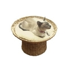 40 Winks Naturals Banana Leaf Raised Sleeper Cat Bed