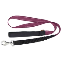 Leads & Harnesses  - James & Steel Sotnos Anti Jolt Dog Lead - Pink