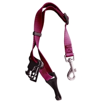 Pets & Domestic Animals  - James & Steel Sotnos ISOfix Universal Seat Belt Restraint - Pink