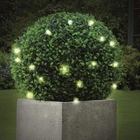 Plants & Plant Care  - Battery Powered Gardman Pre-Lit Topiary Ball - 30cm