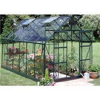 Greenhouses  - 12x8 Toughened Long Pane