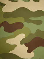 Other Toys  - Camouflage Wallpaper 10m Rasch 260914