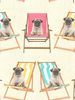 Pugs in Deckchairs Dog Wallpaper Windsor Wallcoverings A161