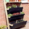 4-Tier Lean-to Ladder Allotment plus FREE SEEDS