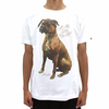 Ichiban All My Dogs Tee White