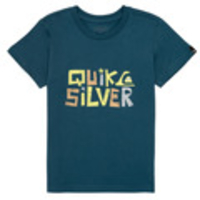 Clothing  - Quiksilver  BIGGER PICTURE  boys