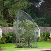 Garden Popadome Fruit Tree Cover (3.5m High)