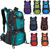 60 L Hiking Backpack Rucksack Breathable Straps - Lightweight Breathable Rain Waterproof Wear Resistance Outdoor Hunting Hiking Climbing Nylon Lake Green Black Purple / Yes