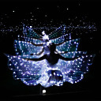 Ballet Dancer LED Layered Wings Women