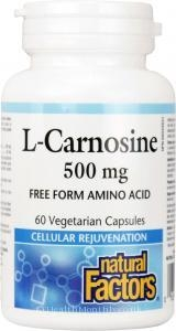 Multivitamins & Minerals|Fortification & Vitality|Eye Care  - Natural Factors L-Carnosine (500mg, 60 Vegetarian Capsules)
