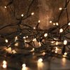 80 Warm White LED Multi-Function String Lights - Green Cable