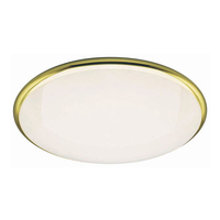 Lighting  - Java Low Energy Emergency Fitting - Polished Brass
