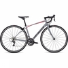 Bikes Specialized Womens Dolce 2019 Satin/Gloss/Cool Gray/Acid Pink