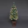 4ft Frosted Colwood Mini Pre-Lit Christmas Tree
