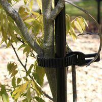 Other Garden Equipment & Decoration  - Plastic Vine Ties