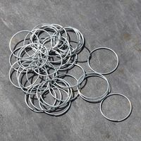 Other Garden Equipment & Decoration  - Zinc Plant Rings