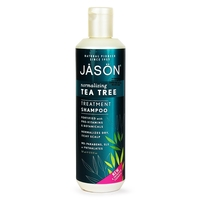 Hair Shampoo  - Tea Tree Treatment Shampoo (Jason) 517ml