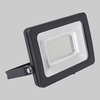 Biard 30W LED SMD Compact Floodlight
