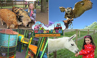 Extended! Animal Adventure Park - Inflatables,  Animals,  safe play areas ALL DAY action!Indoor & Outdoor Fun. 40% off!