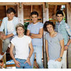 1Wall Official One Direction Barn Wall Mural