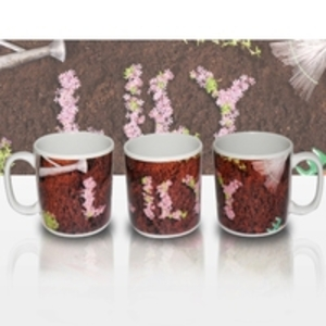 Birthday Gifts > Seniors  - Garden Mug