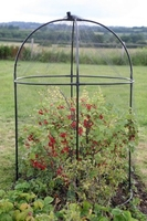 Flower Pots & Stands  - Round Fruit Cage