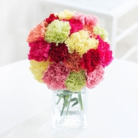 Flowers  - Simply Carnations