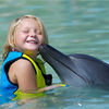 Theme Parks Swimming With Dolphins at Atlantis The Palm