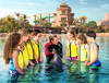 Theme Parks Swimming With Dolphins at Atlantis The Palm Dubai