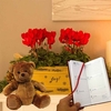 Decorations Gift Gold Trough with Cyclamen, Diary And Teddy