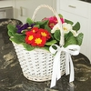Plants & Seeds Mothers Day Basket