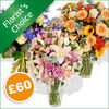 Flowers Florist's Choice £60 - flowers