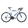 Barracuda Team Replica 21Speed Road Bike