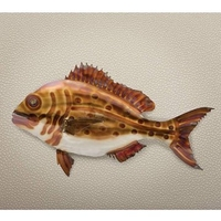 House Accessories  - Snapper Wall Art