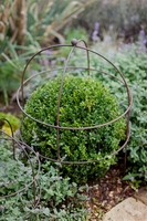 Garden  - Barrington Domed Large Plant Support Aged Metal
