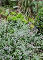 Garden  - Barrington Domed Small Plant Support Aged Metal