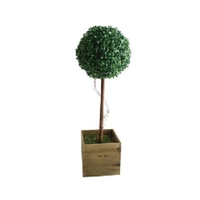Garden & Leisure  - Decorative 80cm Artificial Topiary Tree with Solar Lights