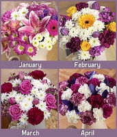 Flowers  - Flowers for a Year