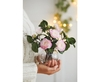 Decorations Pink Camellia Giftset